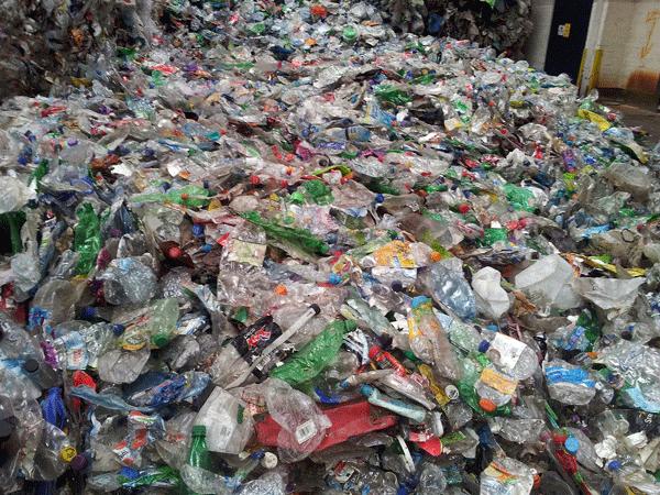 Ditta-smaltimento-imballaggi-alimentari-monza