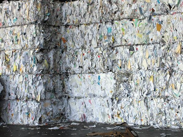 Rispetto-norme-ambientali